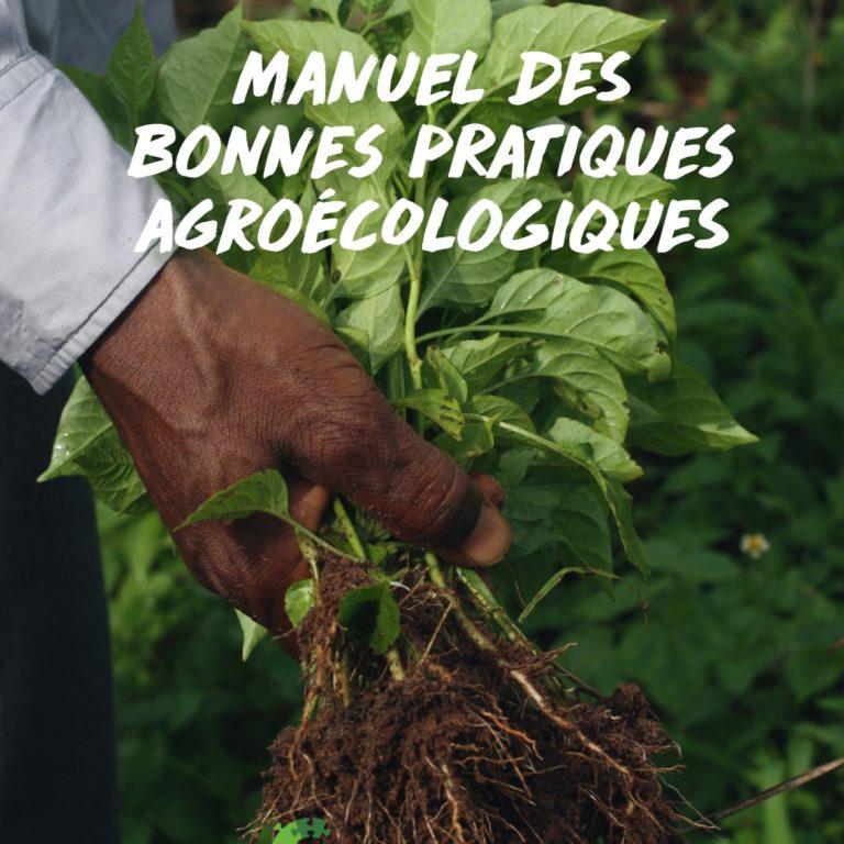 Agroécologie – les bonnes pratiques
